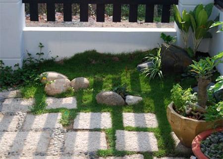 Bố trí cây xanh trong nhà theo phong thủy 1