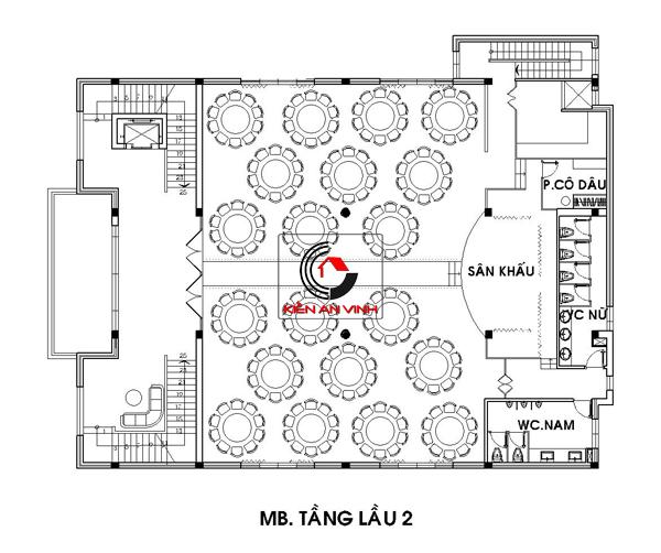 tang 2